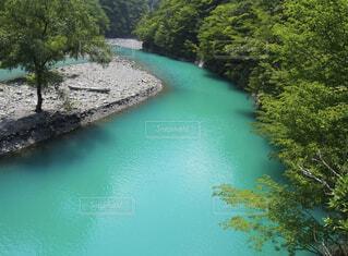 木々に囲まれた川の写真・画像素材[4541361]