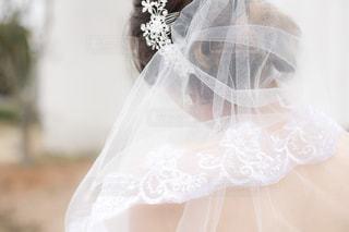 結婚式 - No.443148