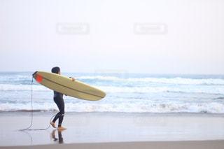 サーフィンの写真・画像素材[1246654]