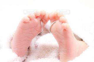新たな家族の写真・画像素材[4120526]