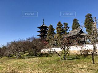 備中国分寺五重の塔の写真・画像素材[1019501]
