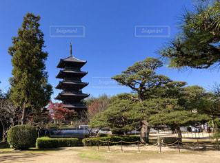 備中国分寺五重の塔の写真・画像素材[1019509]