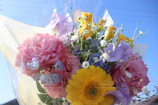 花のクローズアップの写真・画像素材[4487195]