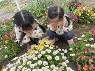 花の前に座っている少女の写真・画像素材[4474832]
