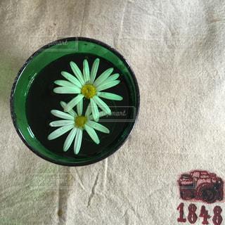 花の写真・画像素材[195313]