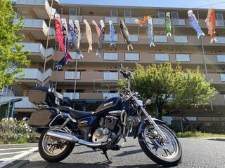 マンション 鯉のぼり アメリカンバイクの写真・画像素材[4480598]