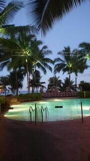 ハワイのリゾートプールの写真・画像素材[4482646]