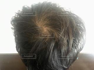 薄毛の写真・画像素材[1323873]
