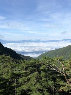雲海の山の写真・画像素材[4481719]