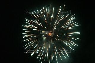 花火の写真・画像素材[195603]