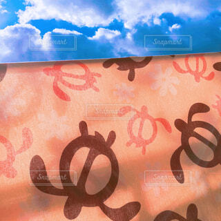 ハワイアンホヌの写真・画像素材[4522687]