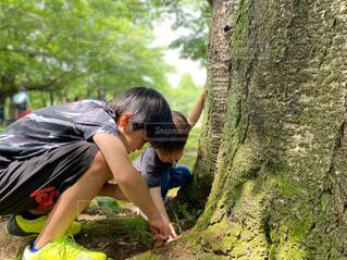 公園 子供の写真・画像素材[4478061]