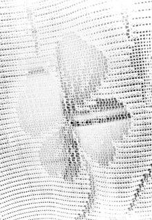 四つ葉幸せクローバー運気アップの写真・画像素材[4645608]