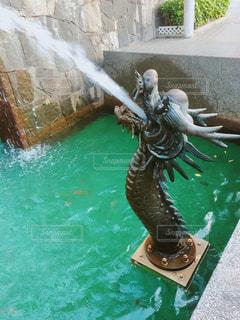 水のプールの人の写真・画像素材[764575]
