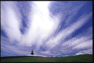 自然の写真・画像素材[198120]