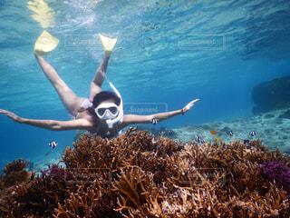 水の中を泳いでいる人の写真・画像素材[4520301]