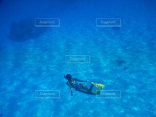 海遊びの写真・画像素材[4525431]