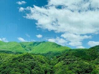背景に山のある大きな緑の畑の写真・画像素材[4489049]