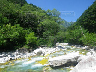 自然の写真・画像素材[200673]
