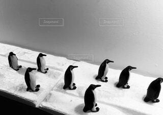 ペンギンのフィギュアの写真・画像素材[4527533]