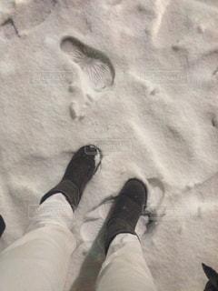冬の写真・画像素材[197406]