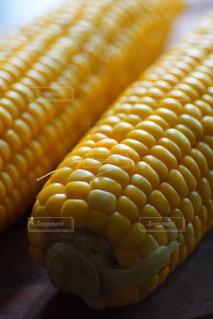 茹でたてトウモロコシのクローズアップの写真・画像素材[4560254]