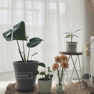 テーブルの上に花の花瓶の写真・画像素材[4570332]
