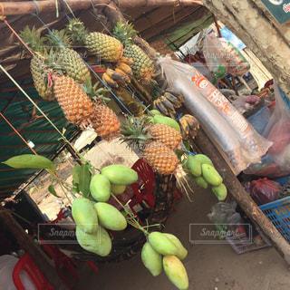 果物の写真・画像素材[247869]
