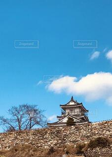 浜松城と青い空の写真・画像素材[4513945]