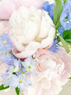 花束 ブーケの写真・画像素材[4521216]