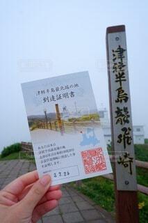 旅の記念の写真・画像素材[4802735]