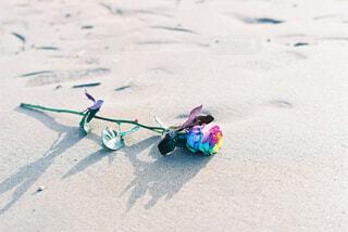 虹色のバラの写真・画像素材[4523729]