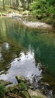 きれいな川の写真・画像素材[4527272]