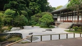 お寺の庭の写真・画像素材[4527508]