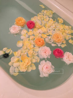 近くの花のアップの写真・画像素材[933060]