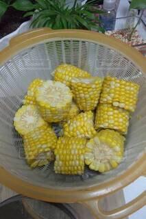 ゆでトウモロコシの写真・画像素材[4532168]
