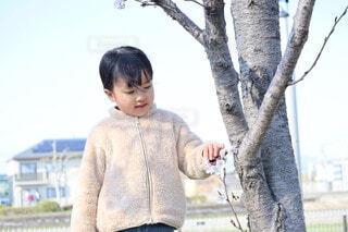 桜と女の子の写真・画像素材[4538712]