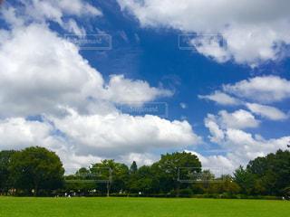 空の写真・画像素材[208439]