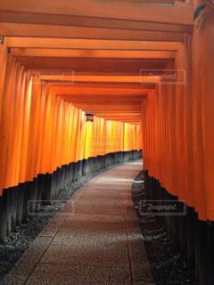 京都の写真・画像素材[200288]