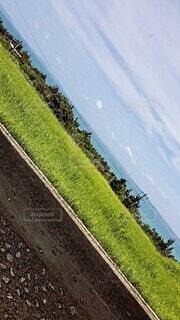 道路の側面の眺めの写真・画像素材[4561986]