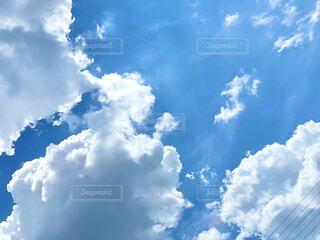 青空の写真・画像素材[4565014]