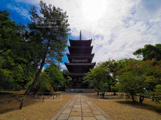 五重塔の写真・画像素材[4549782]