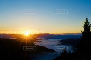 背景に夕日のある木の写真・画像素材[4560561]