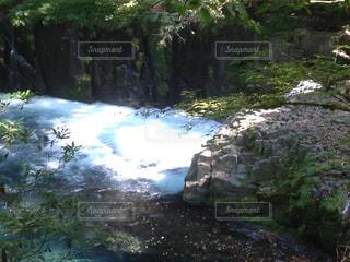 自然の写真・画像素材[201190]