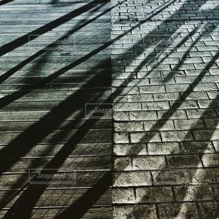 公園の石畳の写真・画像素材[999302]