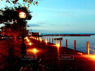 夕方の海辺の公園の写真・画像素材[999677]