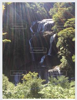 森の中の大きな滝の写真・画像素材[2140714]