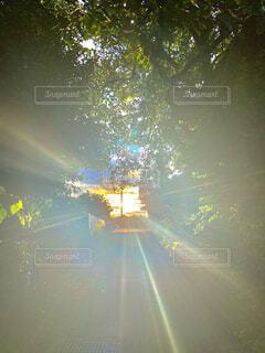 夕日の写真・画像素材[4566932]