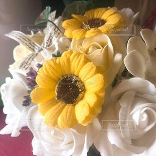 黄色い花のクローズアップの写真・画像素材[2430865]