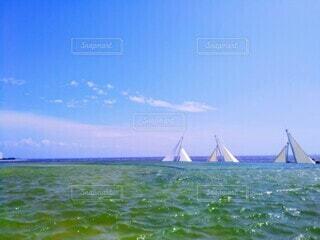 夏の海の写真・画像素材[4677769]